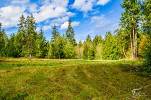 Troll Haven Property For Sale Sequim-2