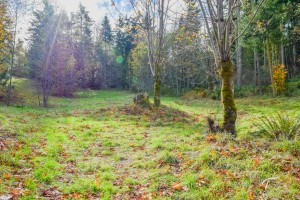 Troll Haven Property For Sale Sequim-7